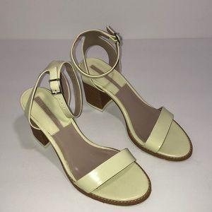 Zara Basic Collection Chunky Heels